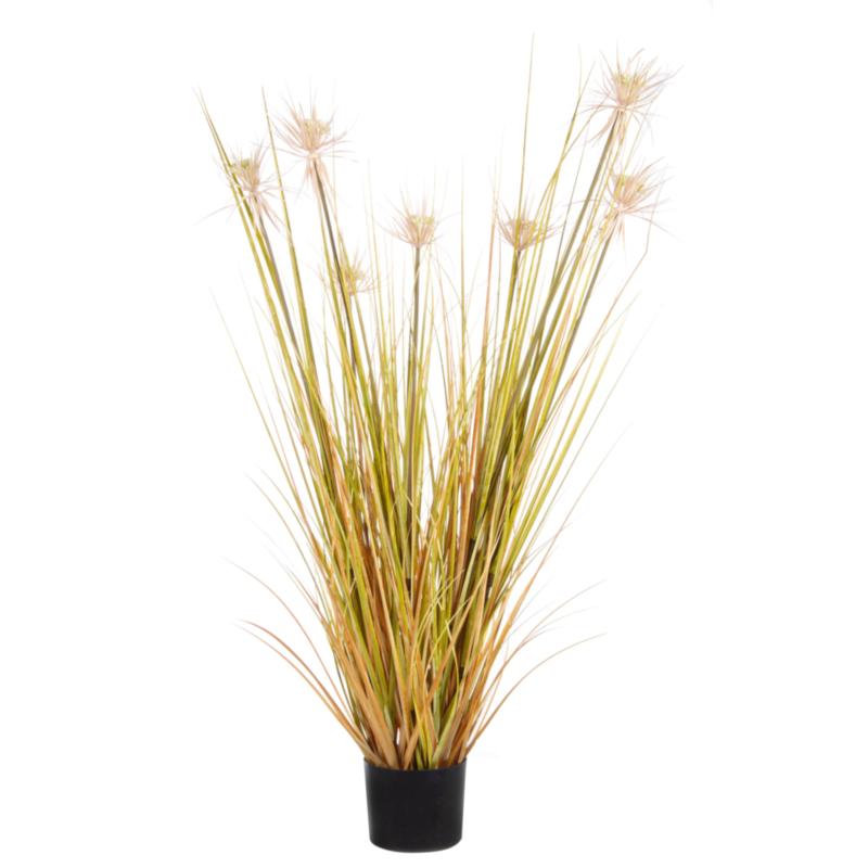 DESERTO STRAW PLANT X7F H120CM W-VASE