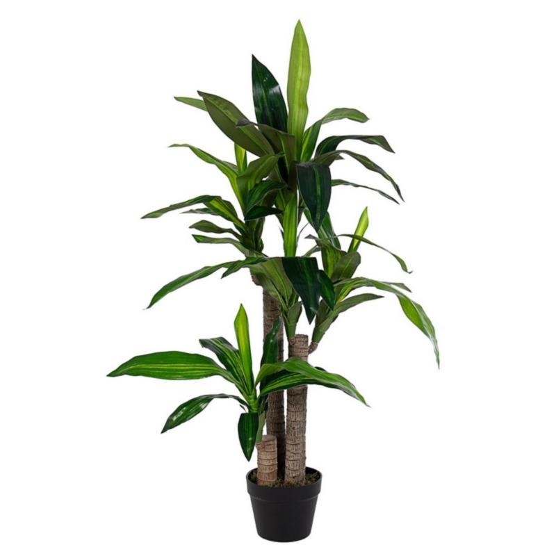 DRACANEA PLANT W-VASE 65LEAVES H110