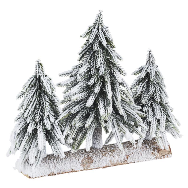 TRIS CIMONE SNOW  PINE